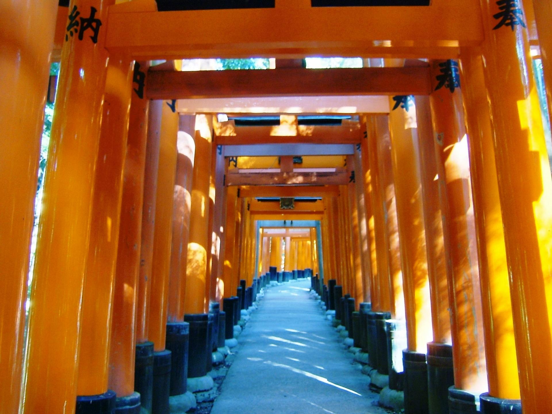 京都といえば|伏見稲荷