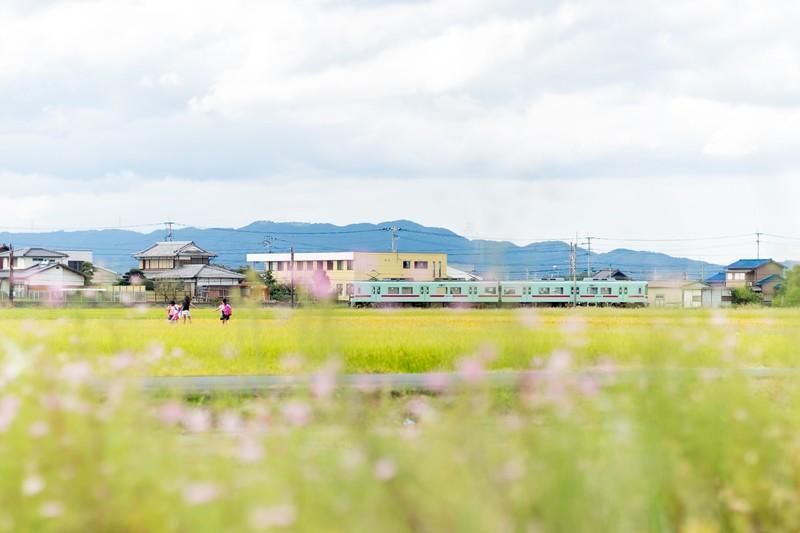 西鉄電車と田園風景(福岡県大刀洗町)